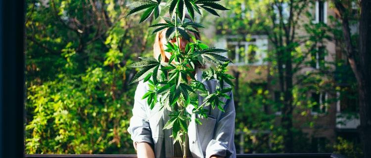 大麻を吸っている人の7つの特徴!身近にいる大麻常習者の見分けかた