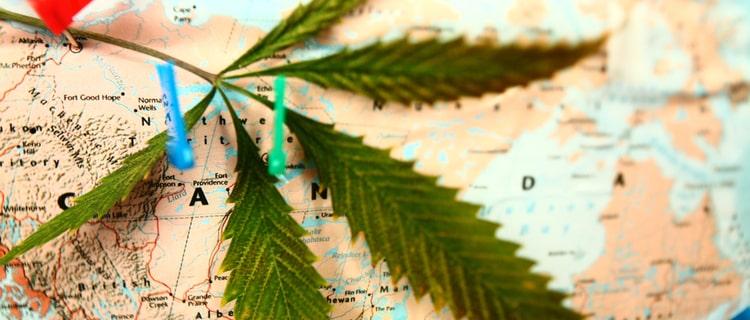 日本人が海外で大麻を吸うのは合法?日本と海外との違いや大麻取締法について解説