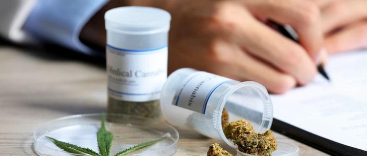 2014年に医療大麻の合法化法案が通過!