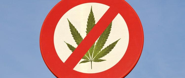 日本で大麻は禁止!しかし、CBDは合法