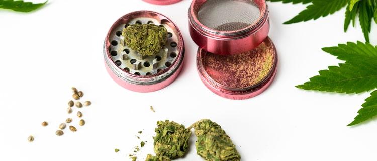 医療用と嗜好用の大麻の違いは成分にあった