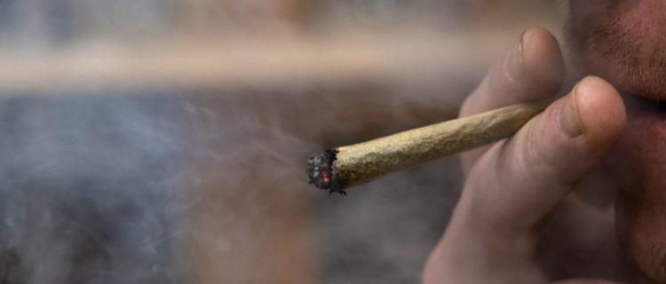 2019年に嗜好用大麻の合法化法案が通過!
