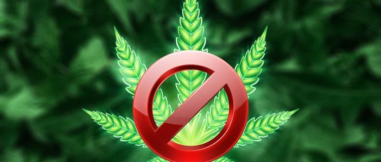 未だに大麻の売買は禁止!合法的に大麻を購入することはまだできない状態
