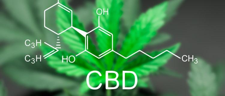 日本で合法な大麻成分CBD