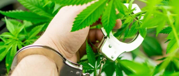 まとめ:日本人が海外で大麻を吸ったら違法
