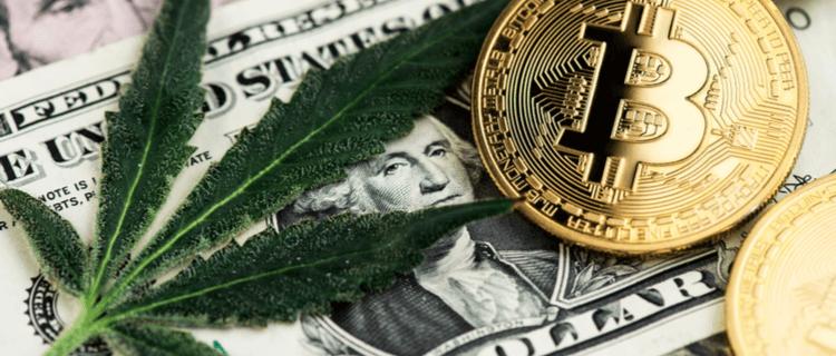 まとめ:大麻の価格は国によって異なる