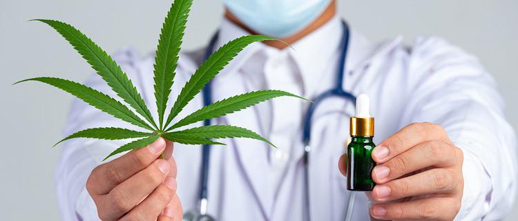 今後、日本でも医療用大麻が合法化の流れになるのか?