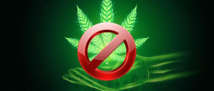 まとめ:大麻を吸っている人の特徴を理解し、大麻常習者を見つけたら警察に通報しましょう!