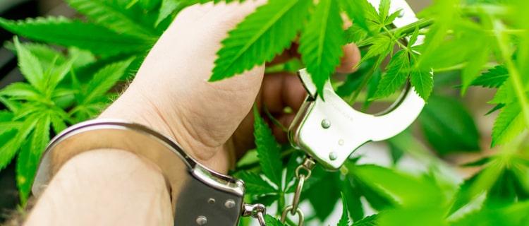 日本人は海外での大麻使用も違法!グアムで大麻を使用した際の、3つのリスク