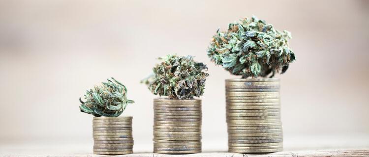 まとめ:日本でも大麻関連株は簡単に売買できる