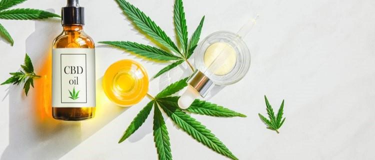 医療大麻活用化に向けた想い