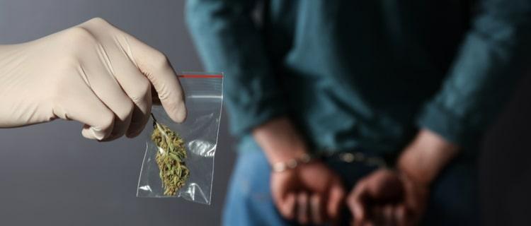 若年層を中心に大麻検挙数が増加している