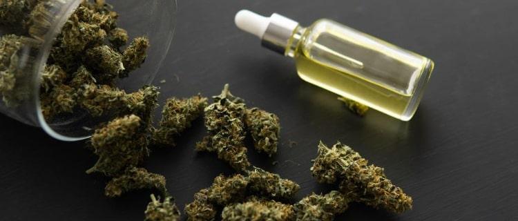 まとめ:THCの混入した商品に注意し、最適なCBDオイル選びを!