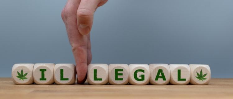 医療用大麻が合法の国は23ヶ国