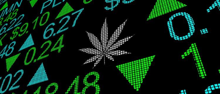 【2021年最新】大麻がコロナから人々を救う?大麻市場がコロナ禍で成長する3つの理由を紹介!