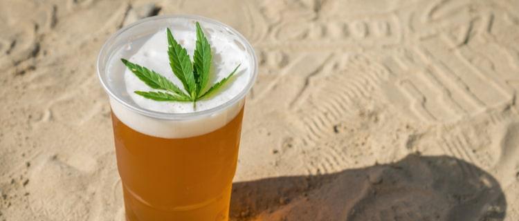 大麻入りのビールが合法!カンナビアビールについて解説