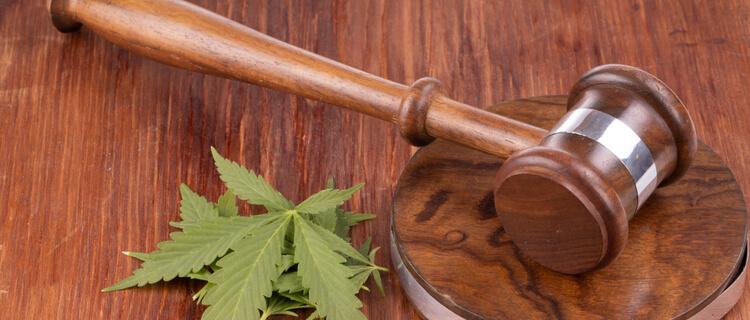 大麻を合法化する5つのメリット