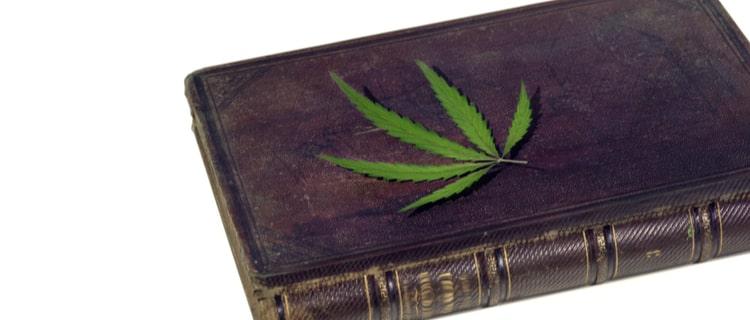 大麻の勉強におすすめな国内外の本13選をご紹介!日本での合法化の可能性についても解説!