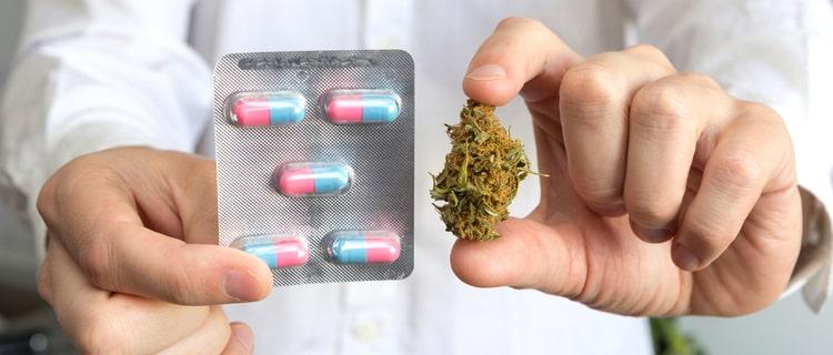誰でも医療大麻を処方されるとは限らない
