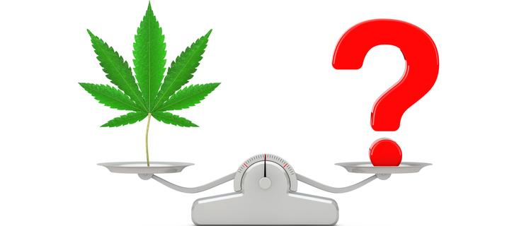大麻に関する3つの疑問を解説!