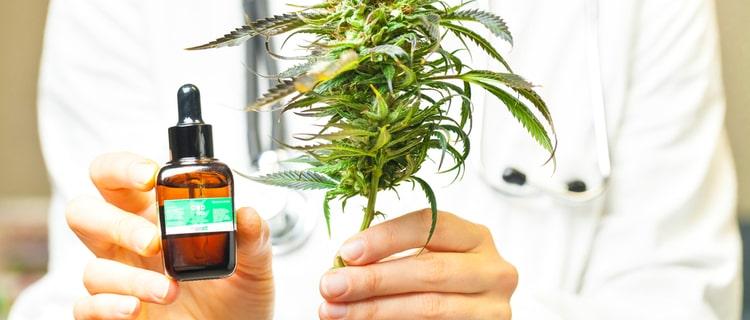医療用大麻は認可が必要である