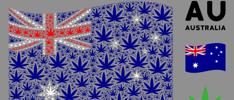 2020年からオーストラリアの一部でマリファナが合法に!
