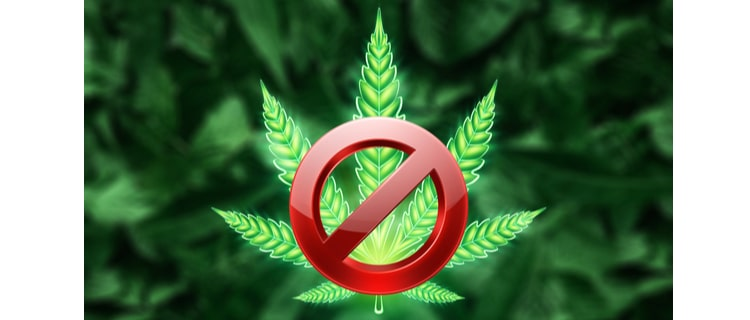 大麻の吸い方の違いとともに、日本での違法性もキチンと理解しましょう!