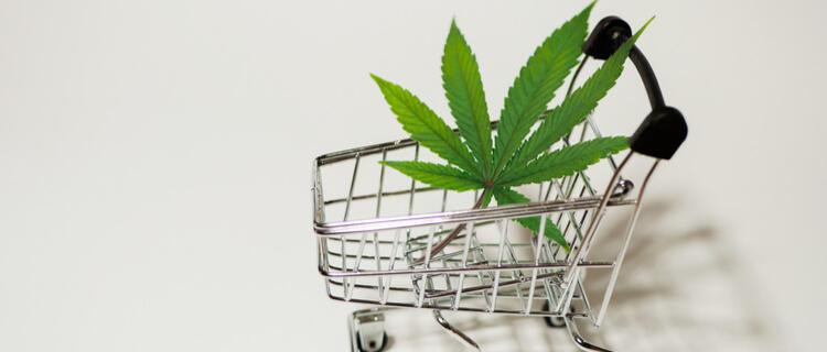 国連麻薬委員会が大麻を最も危険な薬物分類から削除