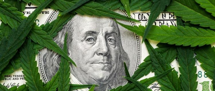 まとめ:IGNITEのような大麻ビジネスが世界で注目を集めている!