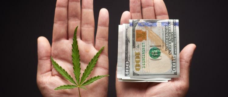 カリフォルニア州での大麻の税収は?なんと累計1000億円超え