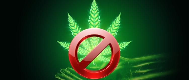 まとめ:大麻は依存性があり有害で危険