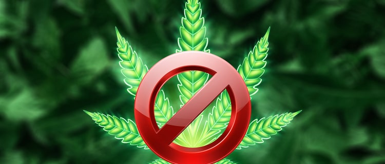 合法化されていても嗜好用大麻は違法