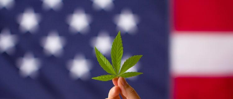 ③カナダ|世界的に見ても高い大麻使用率