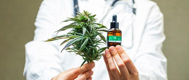 まとめ:コロナ禍で予防・治療や経済回復の特効薬として大麻への期待が高まる