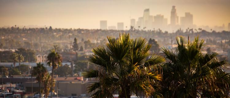 【大麻合法のロサンゼルス】大麻を吸える場所や値段など、現地事情を徹底解説!