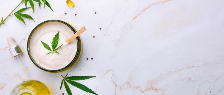 まとめ:ホワイトウィドウは日本では違法ドラック!大麻合法国では人気の品種
