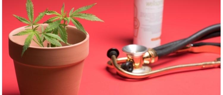 まとめ:アジアや中東は大麻規制が厳しく、欧米は大麻に対して比較的寛容である
