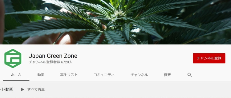 Japan Green Zone|医療大麻を中心に発信しているチャンネル