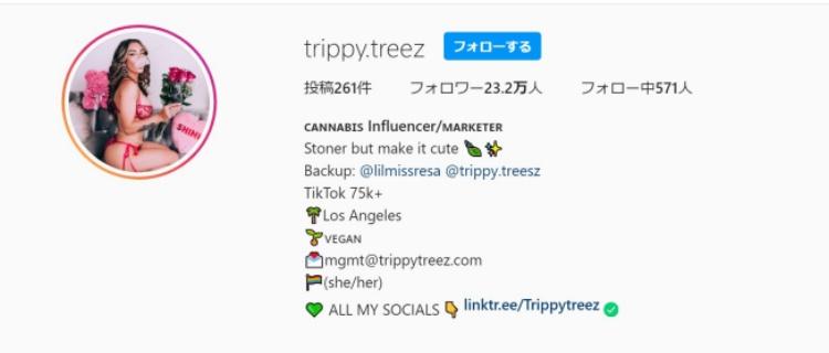 Trippy Treez|可愛くて女性にも男性にも人気