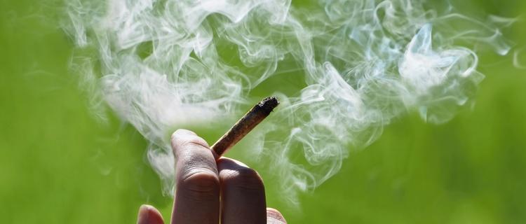 大麻を吸っても効かない人はいる?