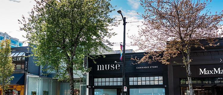 MUSE CANNABIS STORE |大麻を使った料理も紹介