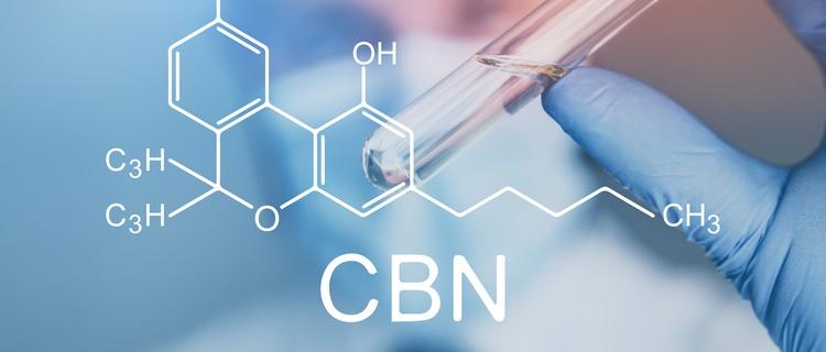 カンナビノール(CBN)はTHCやCBDのように大量に抽出できない