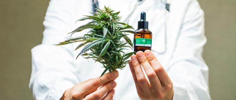 大麻とオイル瓶