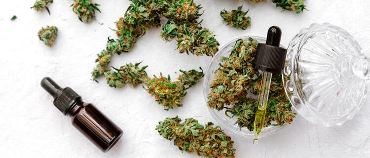 大麻のバッズとスポイト