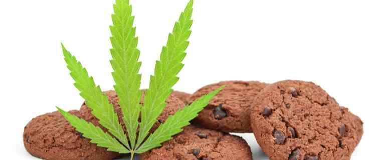 誤飲や誤食により大麻を摂取する可能性がある