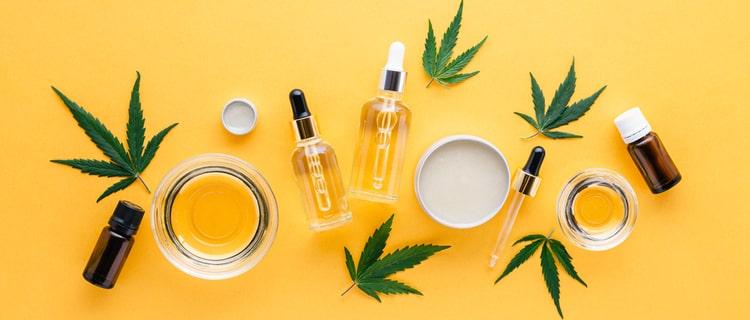 まとめ:業界に革新をもたらす無臭大麻がカナダで開発