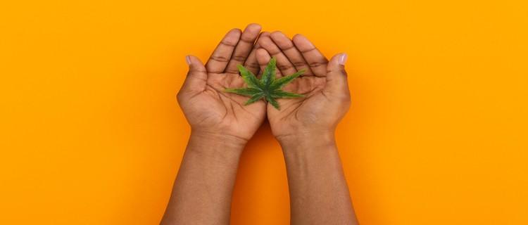 ジャマイカで大麻が非犯罪化されたのは2015年