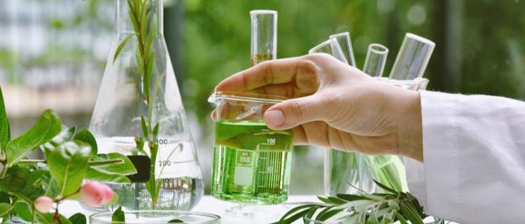 まとめ:テルペンは様々な効果があり、大麻の効果も高めてくれる!