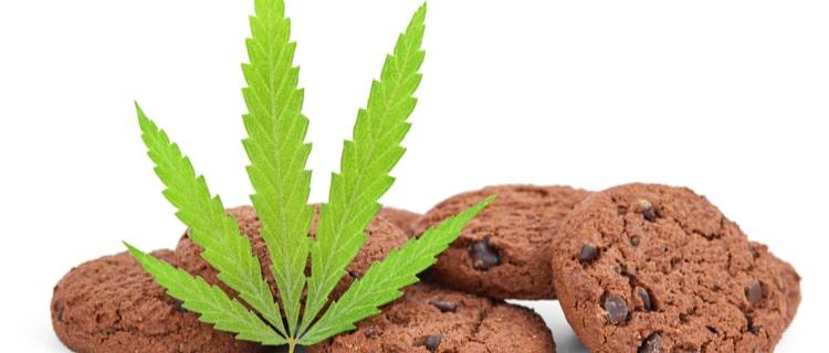 大麻の経口摂取は可能。ただし吸入よりも効果が強いので摂取量に注意。