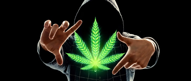 まとめ:本田圭佑が参入した北米では大麻が活況だが違法という考え方はまだ強い